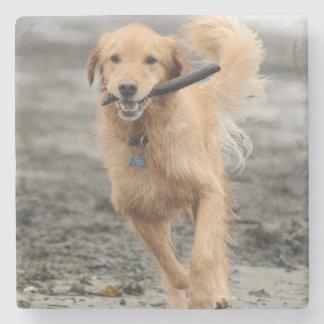 Golden retriever que corre con el palillo en boca posavasos de piedra