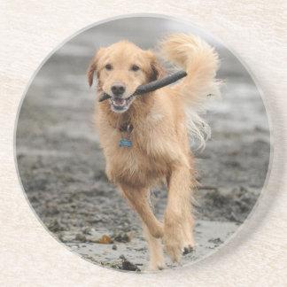 Golden retriever que corre con el palillo en boca posavasos diseño