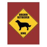 Golden retriever que cruza la muestra (XING) Postal