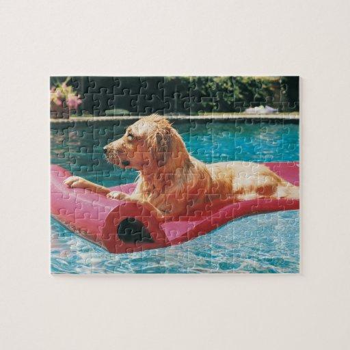 Golden retriever que miente en una cama de aire en puzzles con fotos