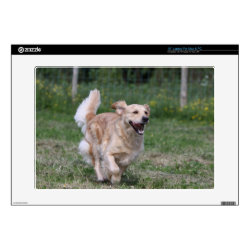 Golden Retriever Running 1 Skin For Laptop