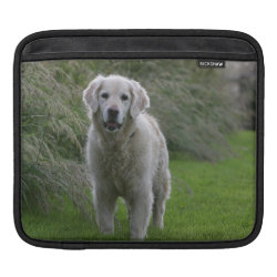Golden Retriever Running 2 Sleeve For iPads