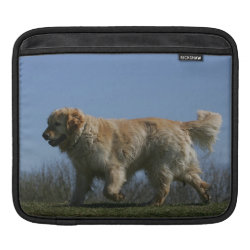 Golden Retriever Running 3 Sleeve For iPads