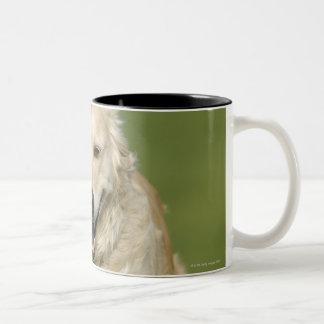 Golden retriever running through meadow Two-Tone coffee mug