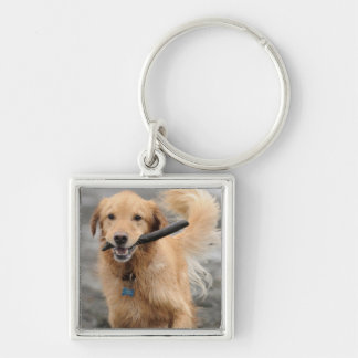 Golden Retriever Running With  Stick In Mouth Keychain
