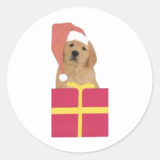Golden Retriever Santa Hat Gift Box Classic Round Sticker