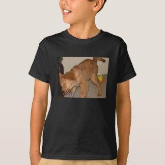 Golden Retriever Shaking It Off T-Shirt