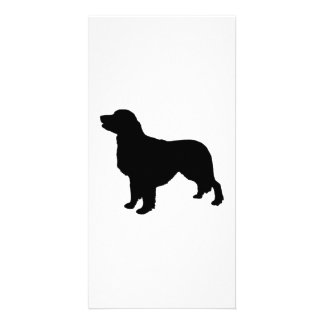 Golden Retriever Silhouette Love Dogs Card