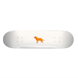 Golden Retriever Skateboard