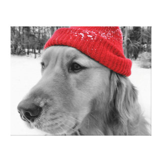 Golden Retriever Ski Dog Canvas Print