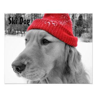Golden Retriever Ski Dog Custom Text Photo Print