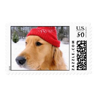 Golden Retriever Ski Dog Postage