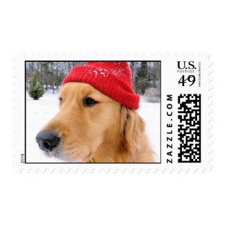 Golden Retriever Ski Dog Postage Stamp