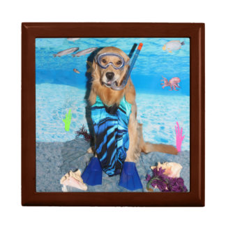 Golden Retriever Snorkeler Jewelry Box