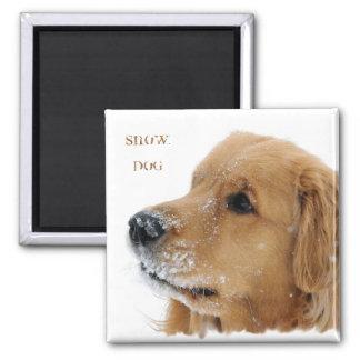 Golden Retriever Snow Dog Text 2 Inch Square Magnet