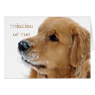 Golden Retriever Snow Dog Thinking of You Card