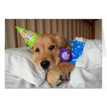Golden retriever soñoliento en cumpleaños de los p tarjetón