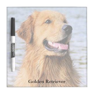 Golden Retriever Square Dry Erase Board