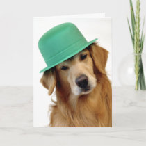 Golden Retriever St. Patrick's Day Card