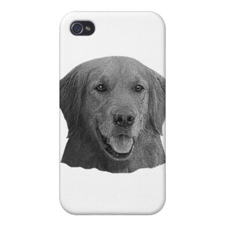 Golden Retriever Stylized Image iPhone 4/4S Cover