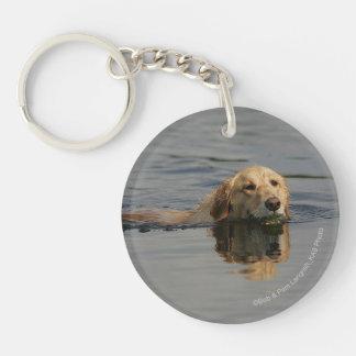 Golden Retriever Swimming Keychain