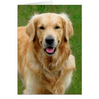 Golden Retriever Sympathy Card