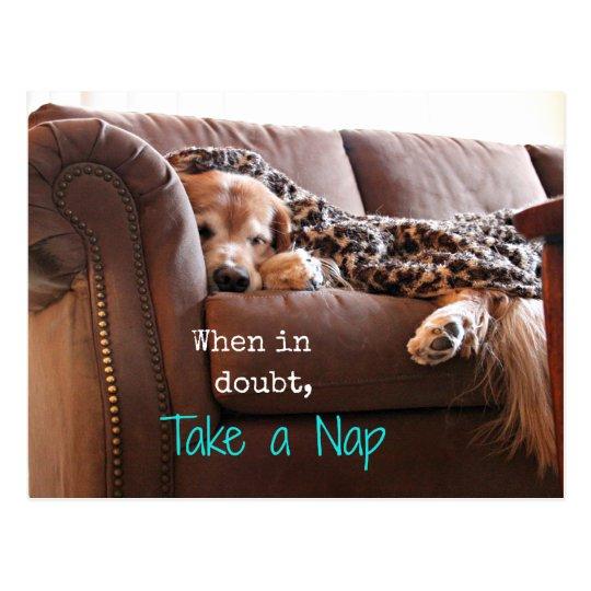 Golden Retriever Take a Nap Postcard