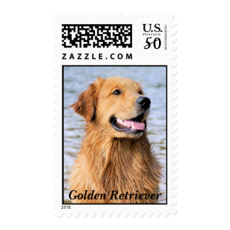 Golden Retriever Text Postage