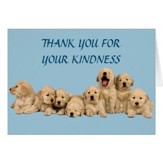 Golden Retriever Thank You Card