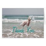Golden Retriever Thank You Card Ocean