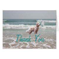 Golden Retriever Thank You Card Ocean
