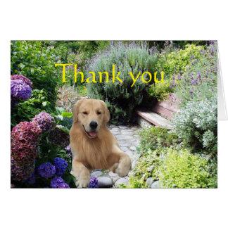 Golden Retriever Thank You In The Garden Card