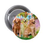 Golden Retriever Trio - Garden Pins