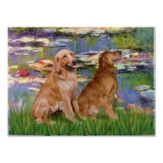 Golden Retriever (two) - Lilies 2 Poster