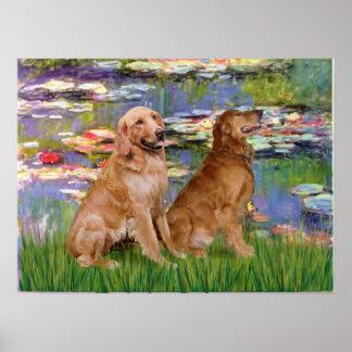 Golden Retriever (two) - Lilies 2 Poster
