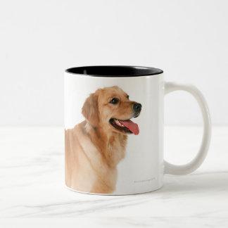 Golden Retriever Two-Tone Coffee Mug