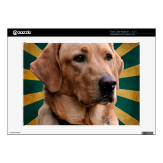 Golden Retriever Vintage Background Green Yellow Decal For Acer Chromebook