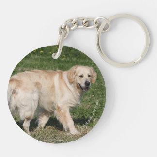 Golden Retriever Walking Keychain