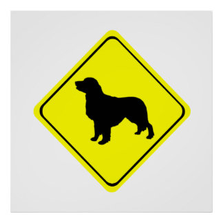 Golden Retriever Warning Sign Love Dogs Silhouette