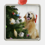 Golden retriever which watches Christmas tree Metal Ornament