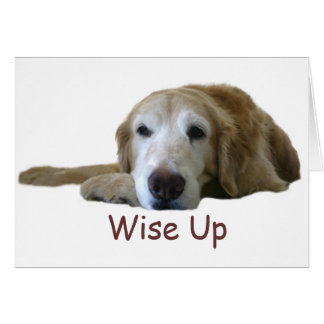 Golden Retriever Wise Up Card