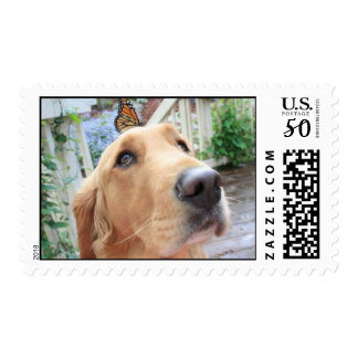 Golden Retriever with Butterfly Postage