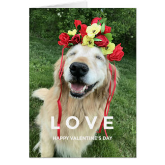 Golden Retriever With Flower Crown Valentine's Day Card