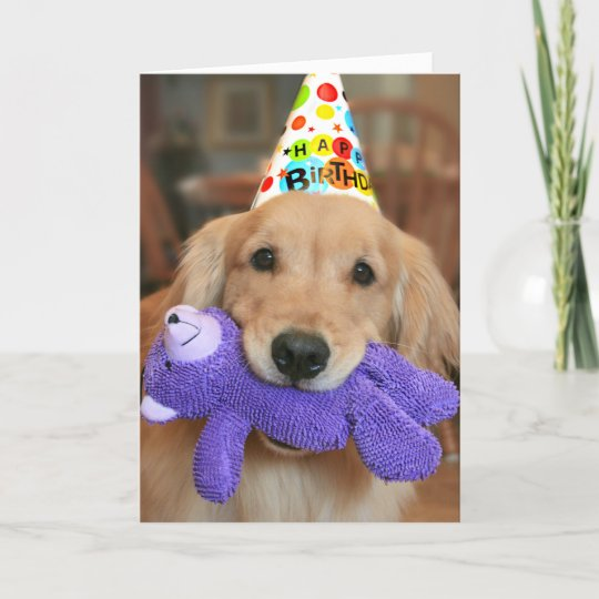 Golden Retriever With Happy Birthday Hat And Toy Card Zazzlecom