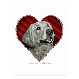 Golden Retriever with Heart Postcard