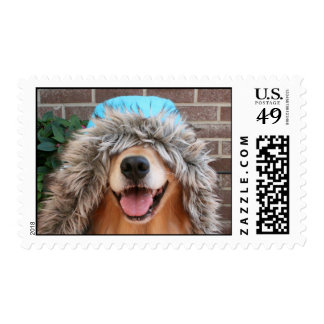 Golden Retriever With Hood Postage Stamp