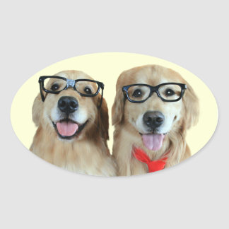 Golden Retriever With Nerd Glasses Stickers