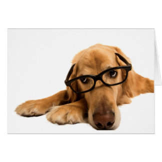 Golden Retriever with nerdy glasses Card