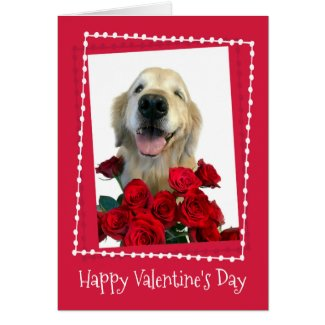 Golden Retriever With Red Roses Valentine's Day Card