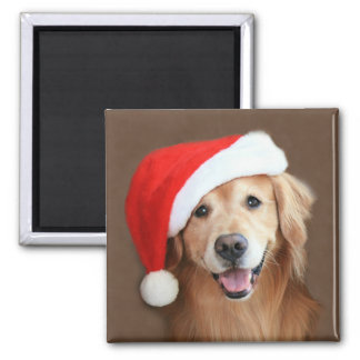 Golden Retriever With Santa Hat 2 Inch Square Magnet